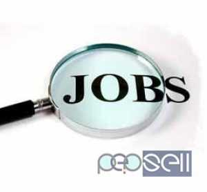 Need Diploma/ B Tech Fresher/Experienced candidate urgently