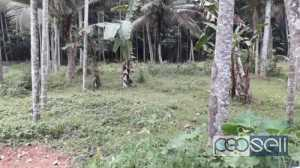 5 cent Residential Land / plot for sale in Andoorkonam