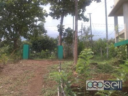 Cottage for rent near Munnar 4