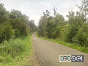 Cottage for rent near Munnar