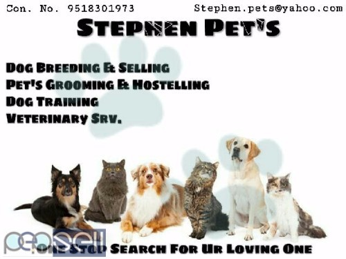 All breeds available here 0