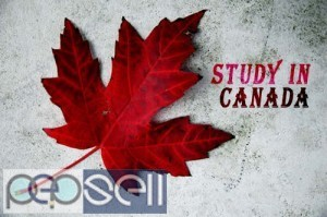 Study in Canada Guide for International Students 1