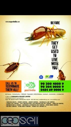 Pest control pest services 3