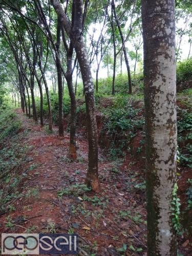 10 acre land for sale near Mangalore 0
