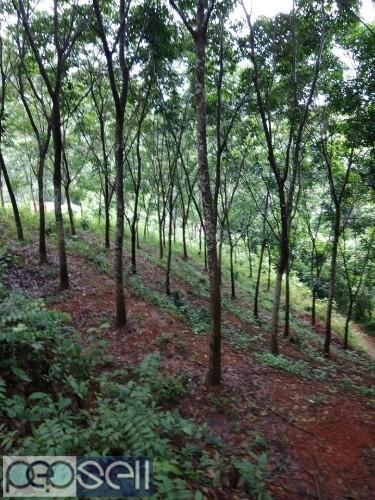 10 acre land for sale near Mangalore 1