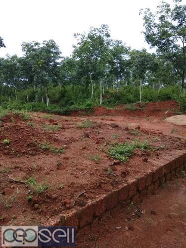 10 acre land for sale near Mangalore 2