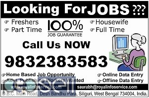 Home Based job Opportunities 0