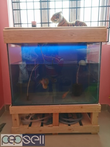 A year old fish tank set for sale.. 0