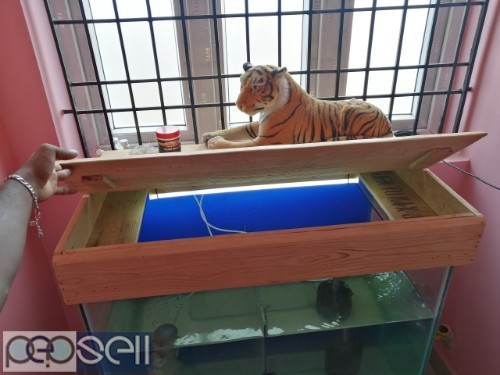 A year old fish tank set for sale.. 3