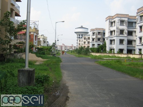 Commercial Shop for Rent 3