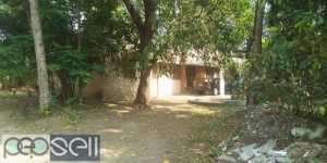 Thripunithura 31cents 35yrs old 3bhk attached good indipnted house 15lks per cents nego