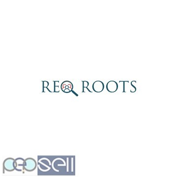 Reqroots - Job | Staffing | Recruitment Agency in India 0