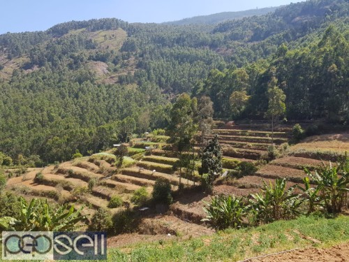 MUNNAR VATTAVADA 20 CENT TO 10 ACRE LAND FOR SALE. IDEAL TO TOURISM 1