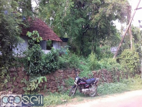 12 Cent Residential land for sale in Koratty Nalukettu 2.30 Lakhs/- cent. 34 meter Main Bus route Frontage  2