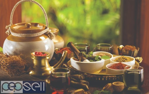 Best Ayurveda Treatment Center in Kerala 0