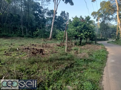 1 Acre For sale (with or without plots) P.P Road Pala 1