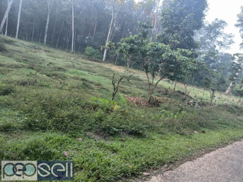 1 Acre For sale (with or without plots) P.P Road Pala 3
