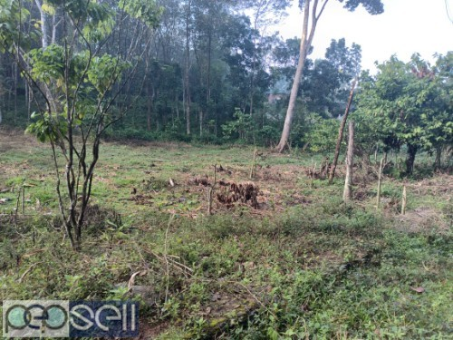 1 Acre For sale (with or without plots) P.P Road Pala 5
