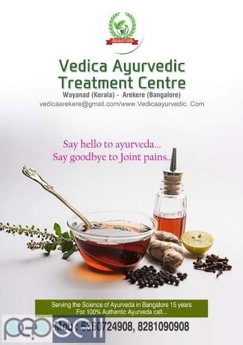Vedica Ayurvedic Treatment Centre | Panchakarma Treatment in Bangalore 0