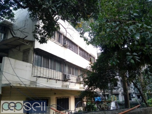 SHOP -SHOWROOM FOR SELL 1912 CARPET LBS MARG MULUND WEST MUMBAI-80 2